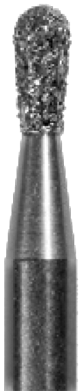 830.010 Birne